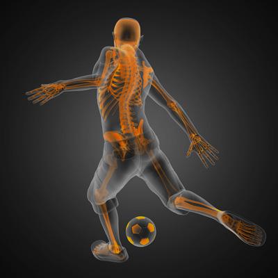 Effetti acuti delle diverse tecniche di stretching sul numero di ripetizioni in una singola sessione di allenamento di resistenza delle gambe