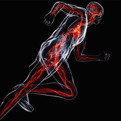 Possibili effetti ergogenici della vitamina D sulla performance atletica e sul recupero